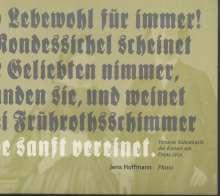 Jens Hoffmann - Virtuose Salonmusik des Kreises um Franz Liszt, CD