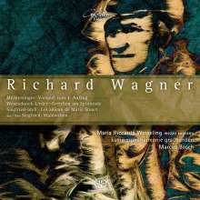 Richard Wagner (1813-1883): Werke für Kammerorchester, CD