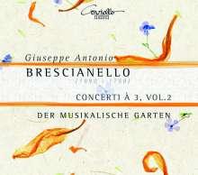 Giuseppe Antonio Brescianello (1690-1758): Concerti a 3 Vol. 2, CD