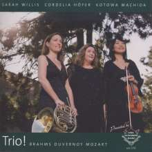 Sarah Willis - Trio!, CD