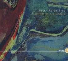Peter Fulda (geb. 1968): Little Box Of Sea-Wonders, CD