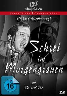 Schrei im Morgengrauen, DVD