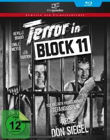 Terror in Block 11 (Blu-ray), Blu-ray Disc