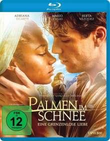 Palmen im Schnee - Eine grenzenlose Liebe (Blu-ray), Blu-ray Disc