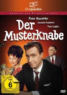 Der Musterknabe, DVD