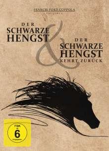 Der schwarze Hengst / Der schwarze Hengst kehrt zurück, 2 DVDs