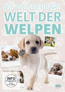 Die wunderbare Welt der Welpen, DVD