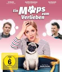 Ein Mops zum Verlieben (Blu-ray), Blu-ray Disc