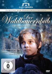 Der Waldbauernbub - Weihnacht in der Waldheimat, DVD