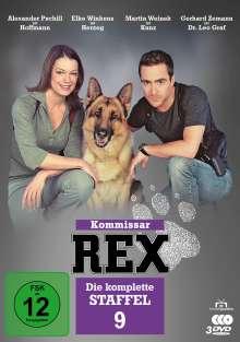 Kommissar Rex Staffel 9, 3 DVDs