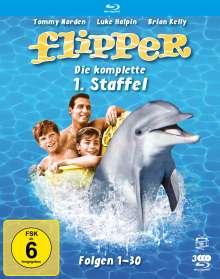 Flipper Staffel 1 (Blu-ray), 3 Blu-ray Discs