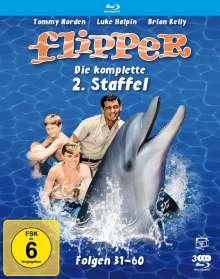 Flipper Staffel 2 (Blu-ray), 4 Blu-ray Discs