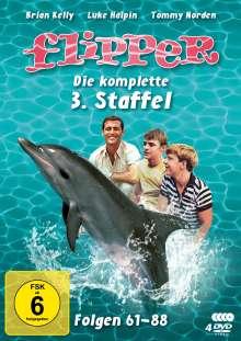Flipper Staffel 3, 4 DVDs