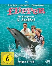 Flipper Staffel 3 (Blu-ray), 3 Blu-ray Discs