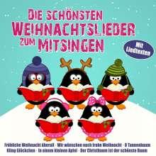 Die schönsten Weihnachtslieder zum Mitsingen, 2 CDs