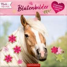 Pferdefreunde: Blütenbilder, Diverse