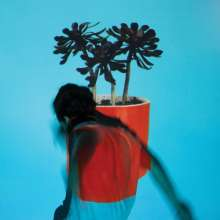 Local Natives: Sunlit Youth, CD