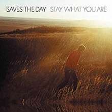 Saves The Day: Stay What You Are (180g), LP