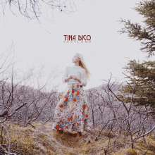 Tina Dico: Fastland, LP