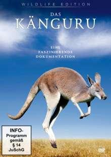 Das Känguru, DVD