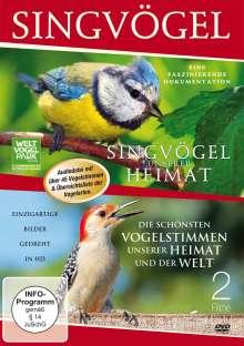 Singvögel unserer Heimat / Die schönsten Vogelstimmen unserer Heimat und der Welt, DVD