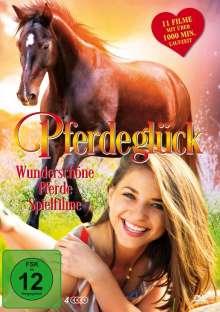 Pferdeglück (11 Filme auf 4 DVDs), 4 DVDs