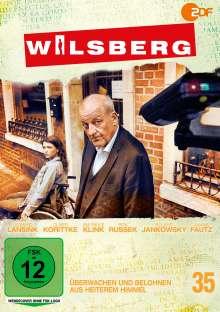 Wilsberg DVD 35: Überwachen und belohnen / Aus heiterem Himmel, DVD