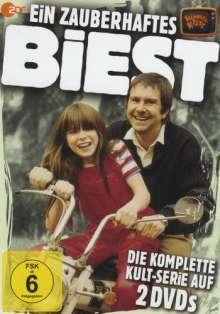 Ein zauberhaftes Biest (Komplette Serie), 2 DVDs