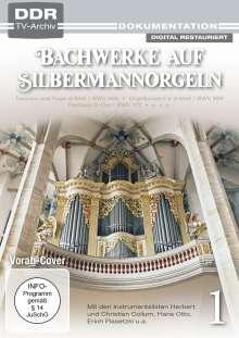 Bachwerke auf Silbermann-Orgeln Vol. 1, DVD