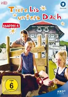 Tiere bis unters Dach Staffel 4, 2 DVDs