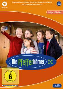 Die Pfefferkörner Staffel 13, 2 DVDs