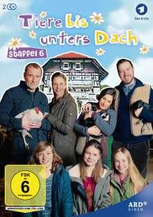 Tiere bis unters Dach Staffel 6, 2 DVDs