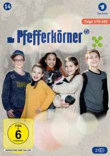 Die Pfefferkörner Staffel 14, DVD