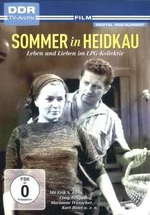 Sommer in Heidkau, DVD