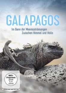 Galapagos: Im Bann der Meeresströmungen / Zwischen Himmel und Hölle, DVD