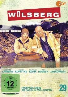 Wilsberg DVD 29: Prognose Mord / Die Nadel im Müllhaufen, DVD