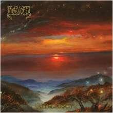 Bask: Ramble Beyond, CD
