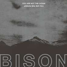 Bison: You Are Not The Ocean You Are The Patient, LP