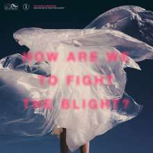 The Shaking Sensations: How Are We To Fight The Blight, 2 LPs