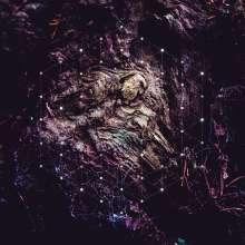 Psychonaut: Unfold The God Man, CD