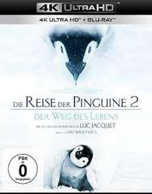 Die Reise der Pinguine 2 - Der Weg des Lebens (Ultra HD Blu-ray & Blu-ray), 2 Ultra HD Blu-rays
