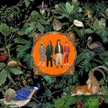 Don Broco: Amazing Things, LP