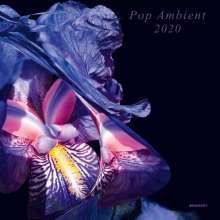 Pop Ambient 2020, CD