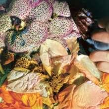 Soela: Genuine Silk, 2 LPs