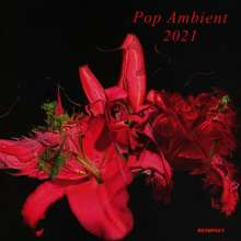 Pop Ambient 2021, CD