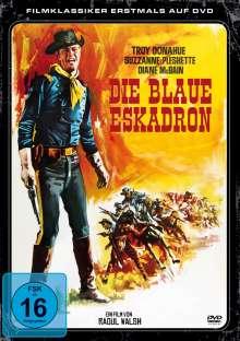 Die blaue Eskadron, DVD