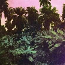 The Dead Sound: Cuts, LP