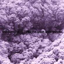 Trentemøller: Into The Great Wide Yonder, 2 LPs