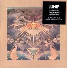 Junip: Fields, 2 LPs
