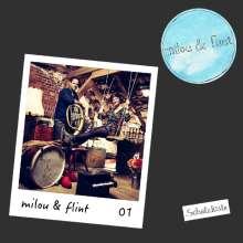 Milou & Flint: Blau über Grün (Box-Set), 1 CD und 1 MC